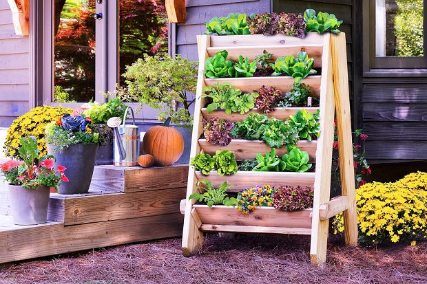 best raised bed gardening ideas