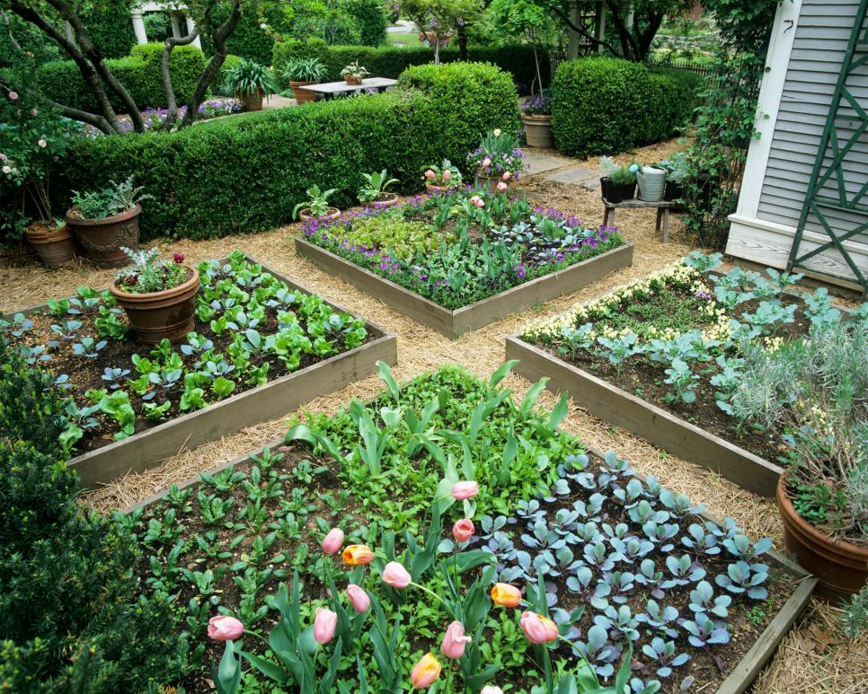 best raised bed garden designs
